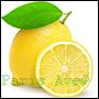 perfumy z odpowiedników olejków  pozyskanych ze skórki cytryny