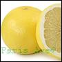 perfumy-uzyskane-z-olejków-grapefruita